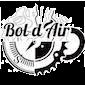 logo_boldair